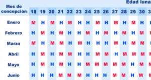 Calendario Chino Para Saber Si Es Nina O Nino.Calculadora Para Predecir Nino O Nina